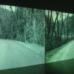 Video, Installation, Susanna Perin